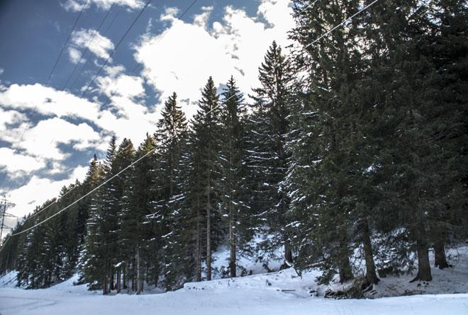 Subaru Snow Drive Experience il weekend sul passo del Tonale