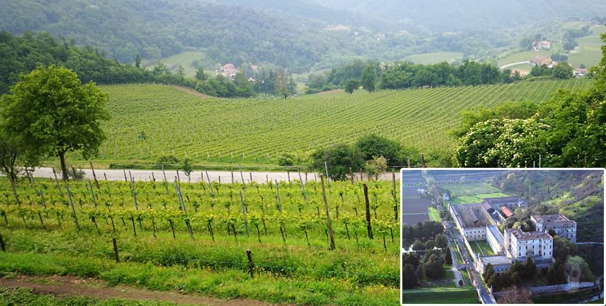 Weekend nei Colli Euganei: vigne e castelli
