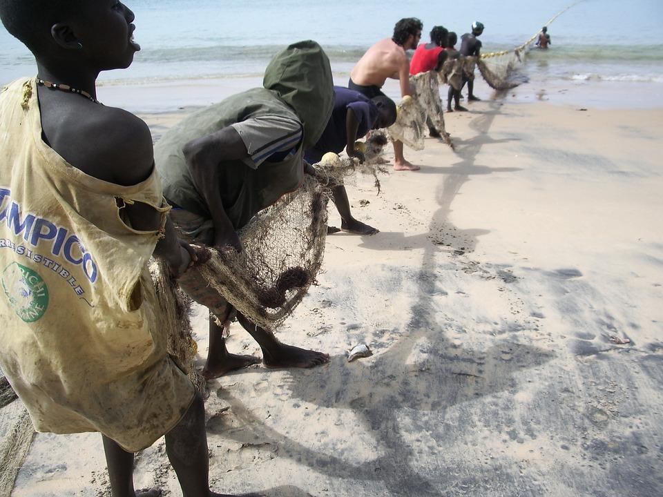 Senegal pesca