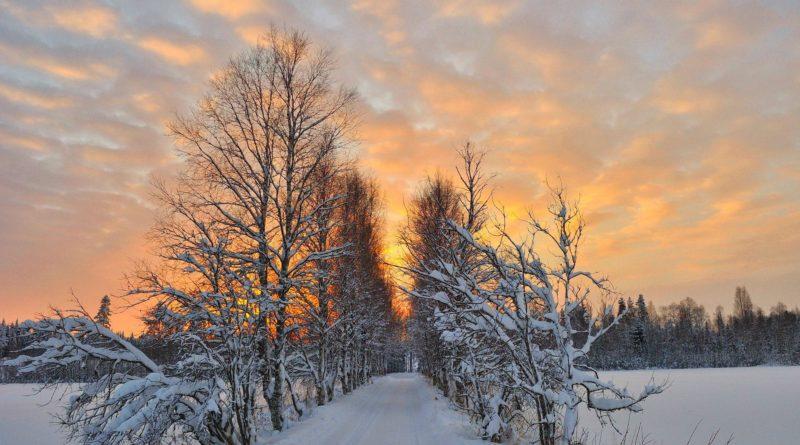 Per chi non ha paura del freddo, l'ultima frontiera è Skellefteå