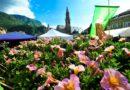 Da oltre cent'anni i fiori più belli sbocciano a Bolzano
