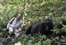 In Uganda con i gorilla di montagna