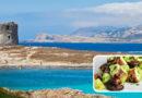 Da Stintino all'Asinara. Gustando il polpo alla stintinese