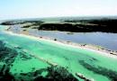 ESTATE GREEN AL MARE: relax in Salento tra mare cristallino e macchia mediterranea