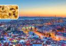 Lisbona, alla scoperta della capitale del fado (1° parte). Con la ricetta del baccalà alla portoghese