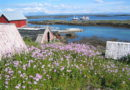 """""""Weekend Green in the World"""" alla Norvegia per la più alta percentuale al mondo di auto ibride ed elettriche"""