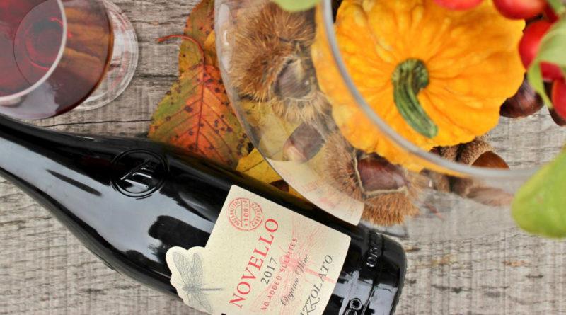 """""""Novello in vintage"""", la cantina Pizzolato di Villorba festeggia l'autunno con una nuova etichetta """"green"""""""