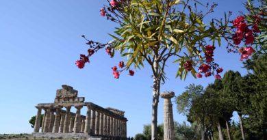 Paestum torna a ospitare la XXI edizione della BMTA e celebra il gemellaggio con Palmira