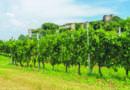 """Borgo Di.Vino 2018 """"Weekend Premium Di.Vino"""" a Pozzolengo, sul  Garda"""