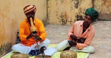 India, il paese dai mille colori e sapori