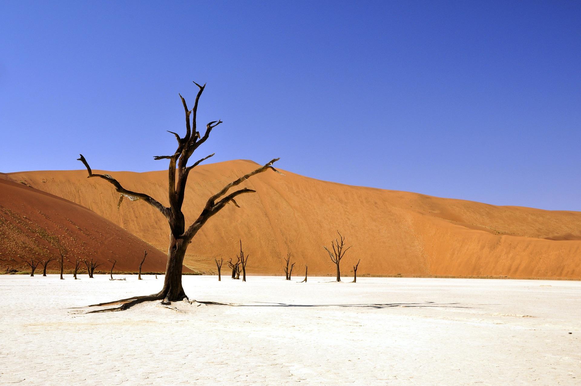 NAMIBIA PER UNA VOLTA