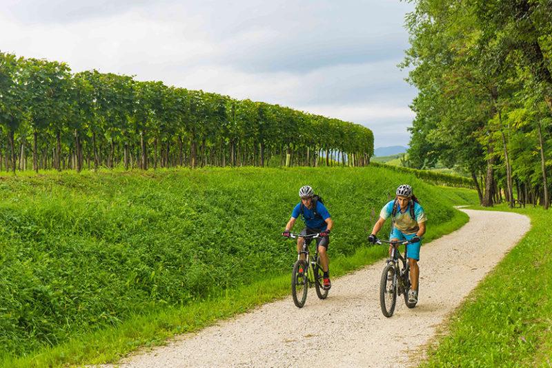 itinerario-in-bicicletta-in-Friuli-Venezia-Giulia